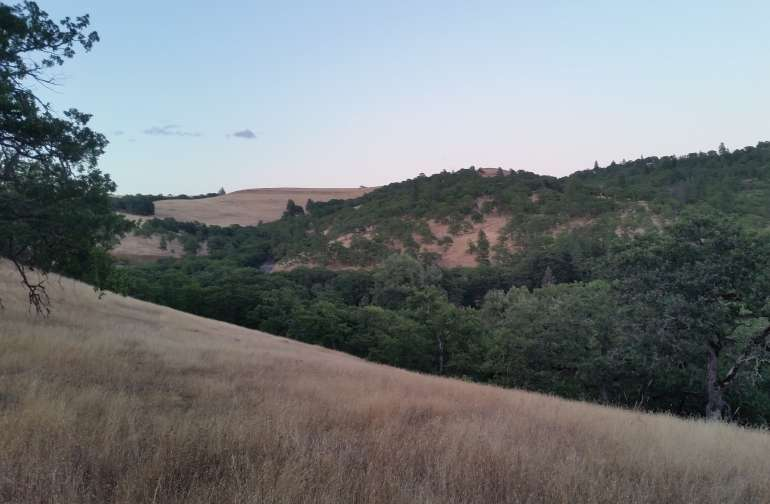 The view of rolling hills to the East