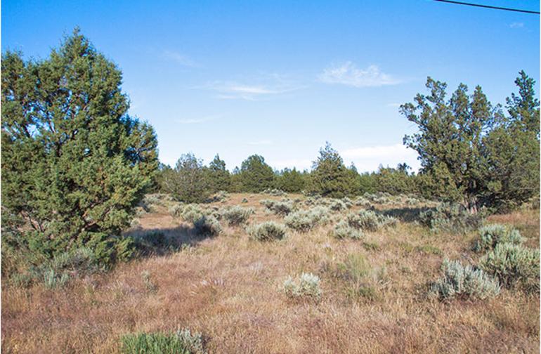 Alturas overlook campground