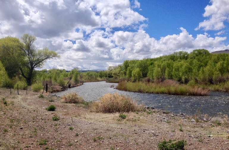 Conejos River runs thru the ranch