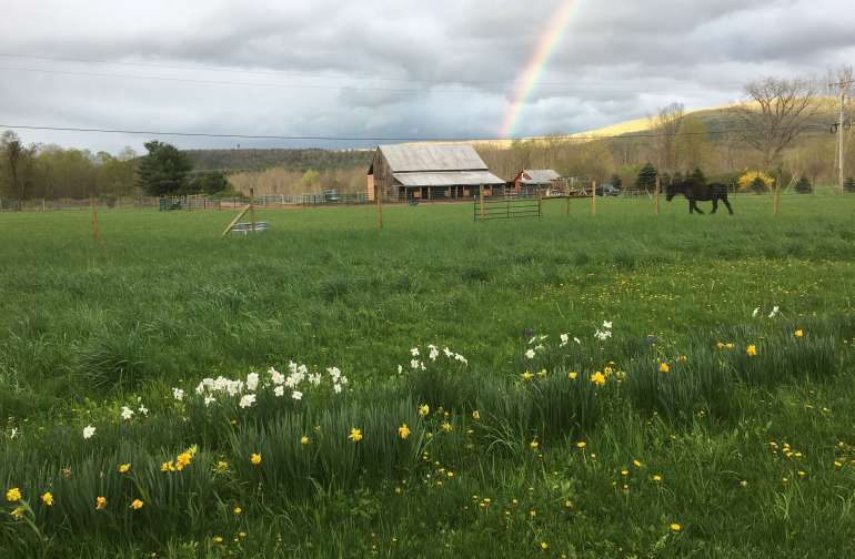 Mustang Valley Ranch