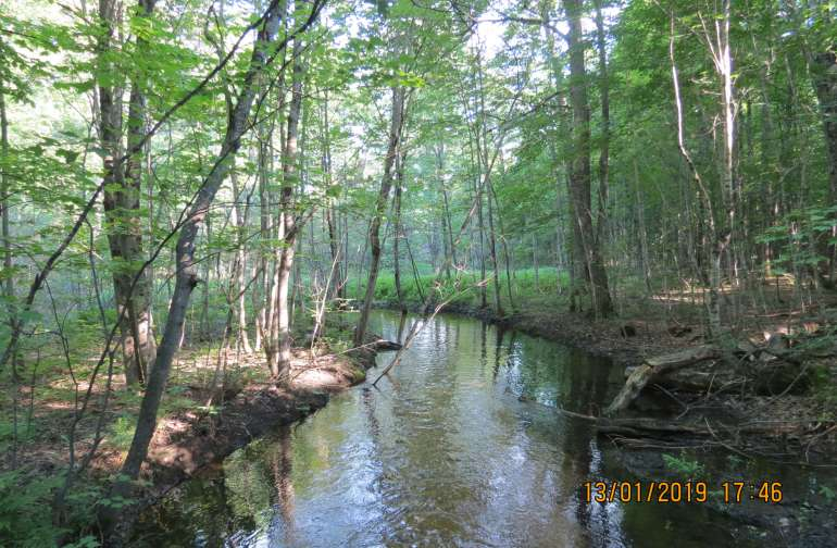July 2018-The sturgeon river on the property