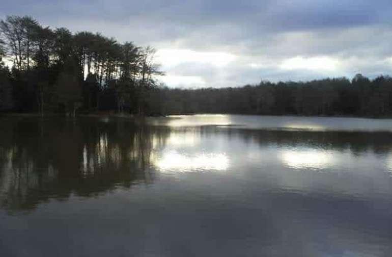 Our beautiful lake
