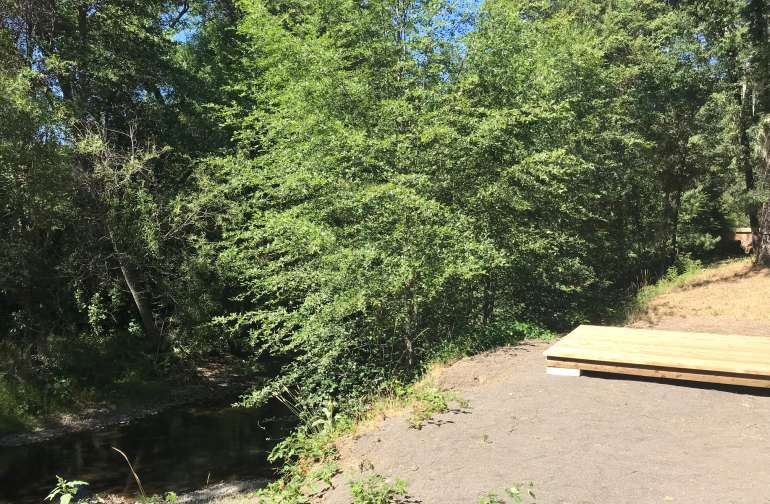 Camping platform near creek