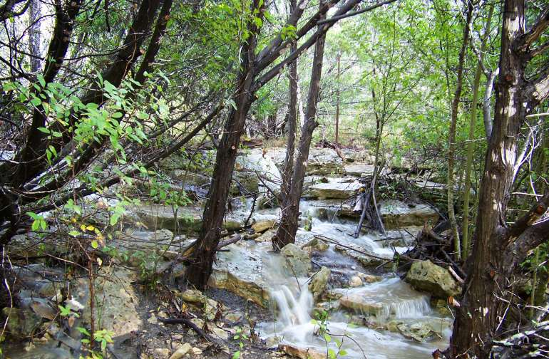 Spring rains cascading over limestone outcroppings.