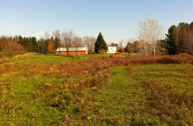 Looking toward house and barn from pasture