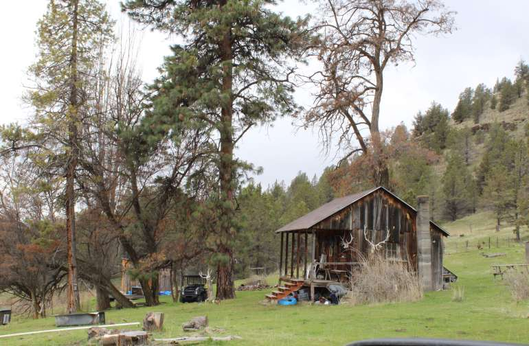 2 small cabins available, one is 100 years old, spring water at the cabin, propane stove and refridgerator