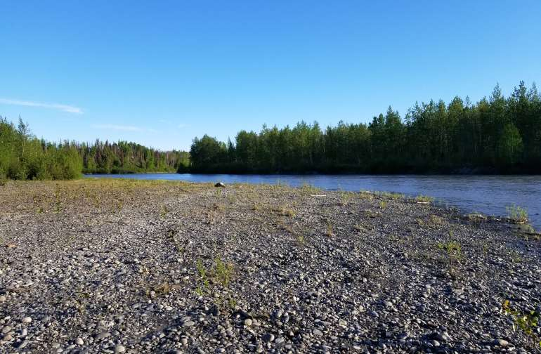 The Big Susitna River on a summer day.