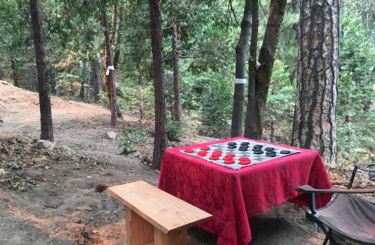 Picnic table w/ two-sided gaming cloth.  This is also site 2 - facilitating up to a 4 or 5 person tent.   The picnic table can be moved anywhere on the grounds.  If two separate group sites are booked, we will arrange to accommodate everybody as best we can.