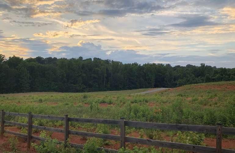 Stateline Farms