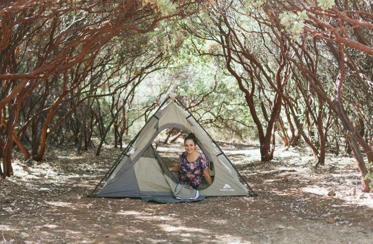 camp under the manzanitas!