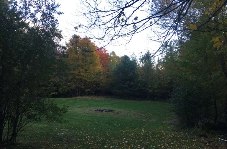This is the big lawn - fire pit in the middle, looks a little more established now. Property extends beyond the treeline.