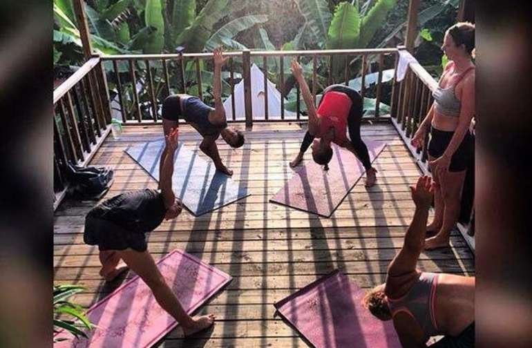 Join us for a mat or aerial yoga class on the tree top yoga deck