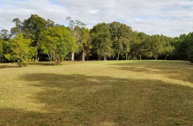 Field view of the property.