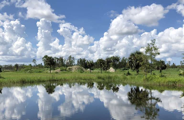 Enchanting Wilderness of SWFL