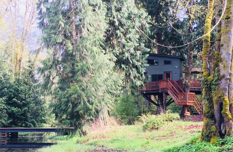 Treehouse overlooking a seasonal pond