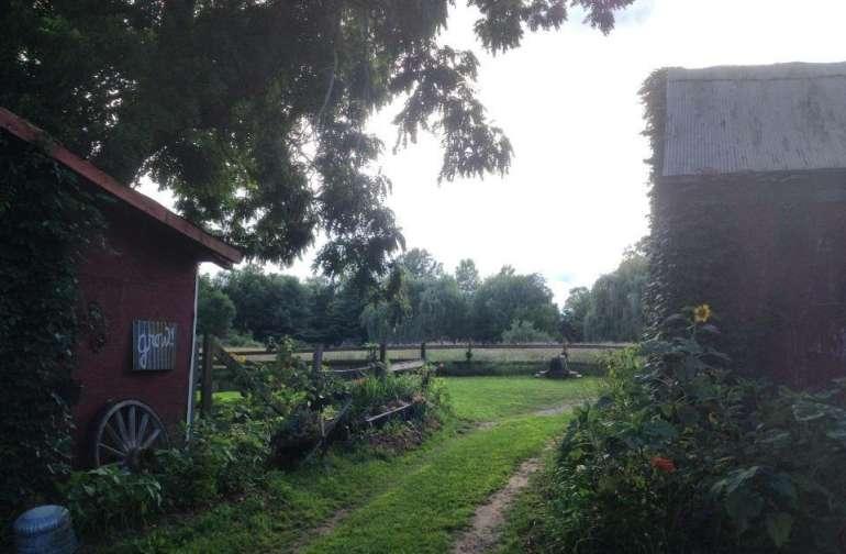 Sun creek farm