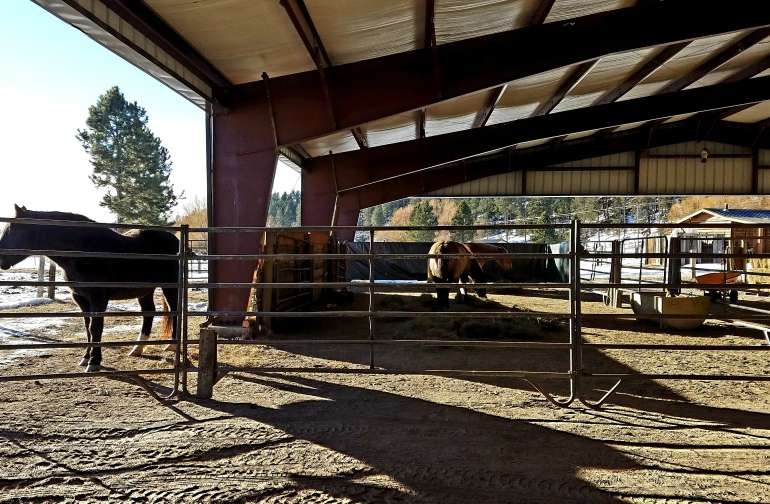 our walk-in barn stall, dividable into 5 stalls.