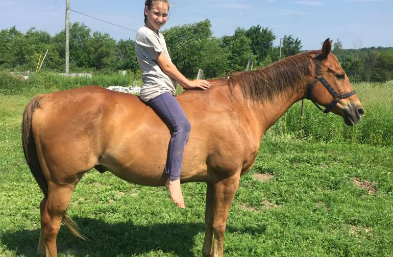 Park and ride your horse