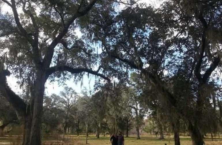 Smokey Acres Primitive RV Site 1