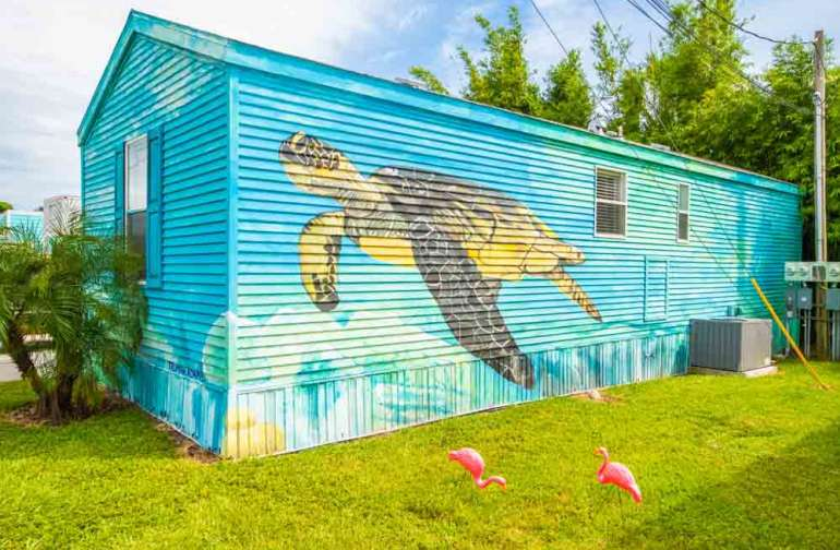 Exterior painting of sea turtle!
