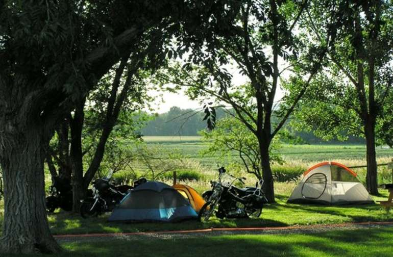 Tent sites with lush green grass and shade trees.