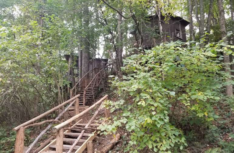 TreeTop Cabin at Healing Springs