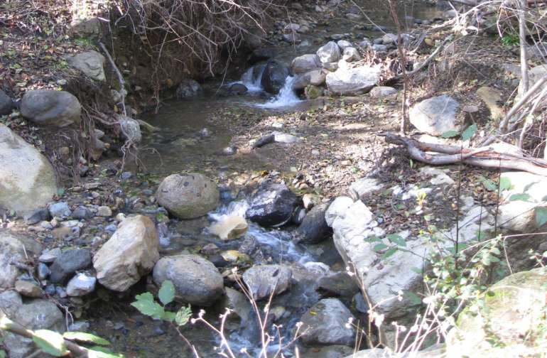 Creekside Spring Camp, photo of Creek next to campsite flat.