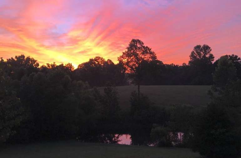 Stunning sunsets are an early evening affair at Fluffy Cluckers..enjoy these from the comfort of your tents