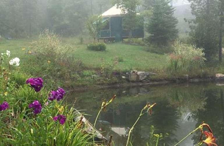 Yurt Site at Birch Tree Acres