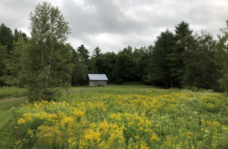 Set in a large field of perennial wildflowers with a large grassy area around the cabin
