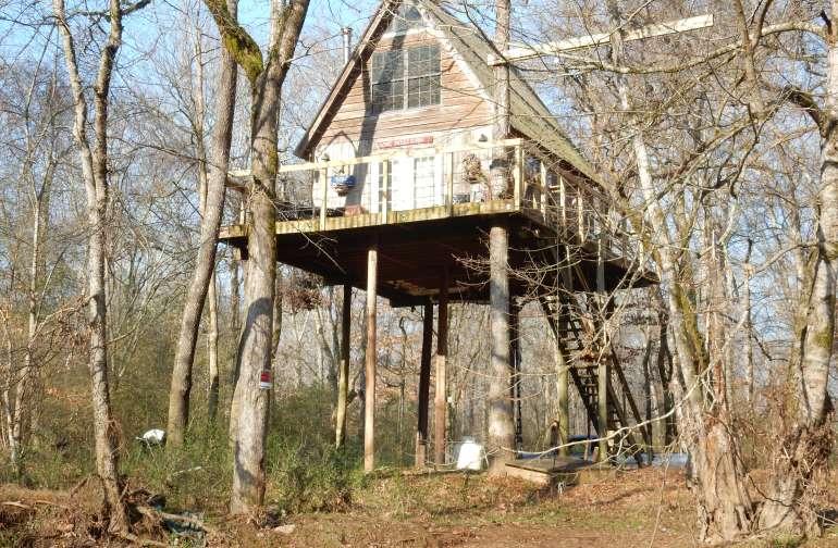 Treehouse - Exterior