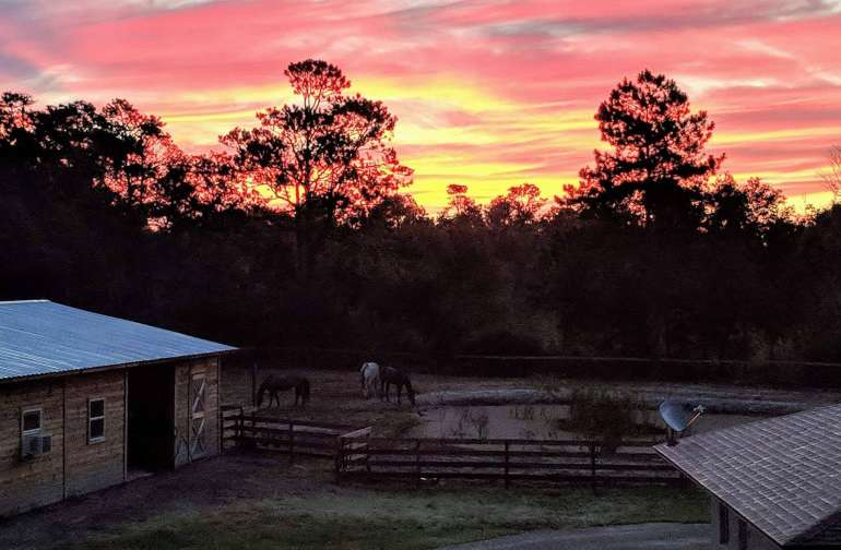 Sunrise at our ranch