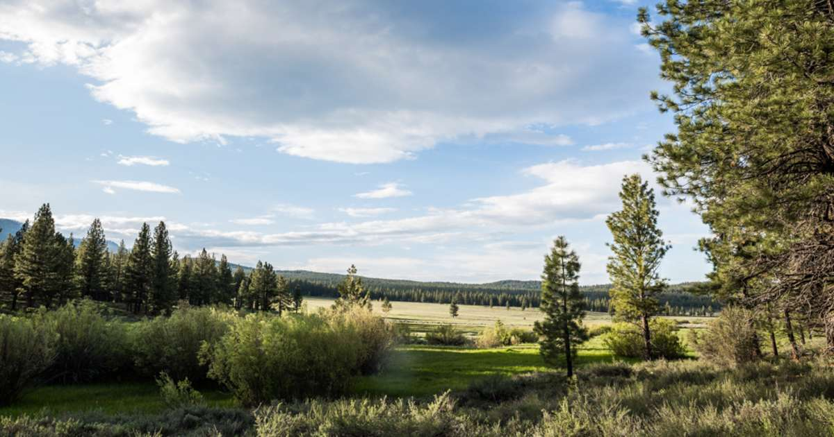 Camping near Reno: The 20 Best Campgrounds - Hipcamp