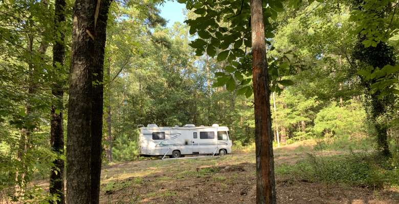 Best Camping In And Near Percy Quin State Park