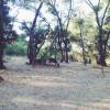 Buckeye and Weber Group Campgrounds