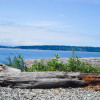 Camano Island Group Campground