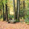 Tuscarora Park Campground