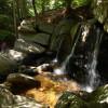 Willard Brook Campground