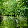Hopeville Pond State Park Campground