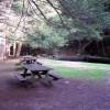 Wolf Den Campground