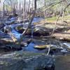 Nipmuck Trail Campsite