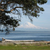 Blake Island Campground