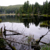 Whitefish Lake Rustic Campgd & Timber-Frear Area