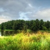 Des Plaines Campground