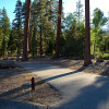 Barton Flats Campground