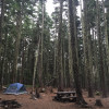 Rainy Lake Campground