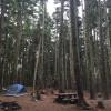 Rainy Lake Campground
