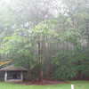 Kalōpā State Campsites