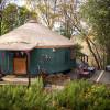 The Yuba Yurt