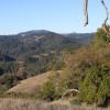 Austin Creek Backcountry Sites